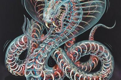 Nychos – Urban Anatomy – Artist Profile