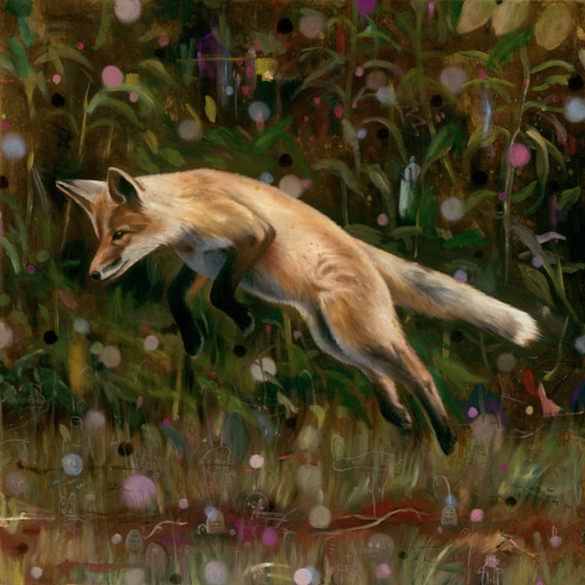 HMüller - Jumping Fox