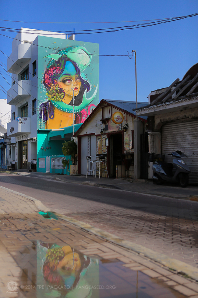 TSuarez - Islan Mujeres