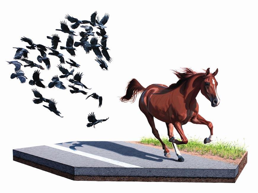 Josh Keyes - Shadow
