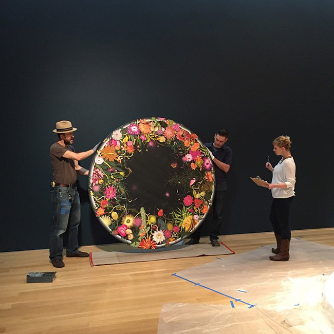 Amir H. Fallah - Hanging 'Night Blooms' at Nerman Museum