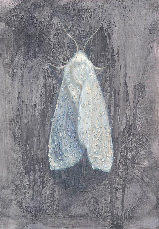 Kari-Lise Alexander - Moth #1