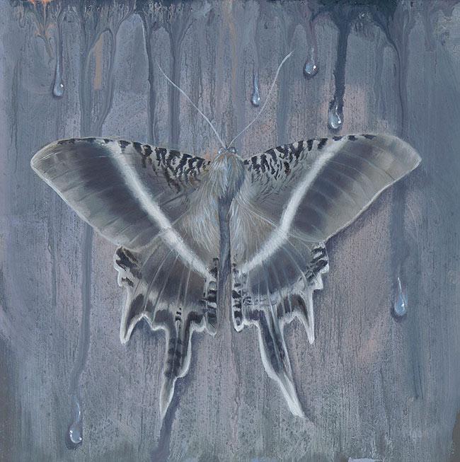 Kari-Lise Alexander - Moth #3