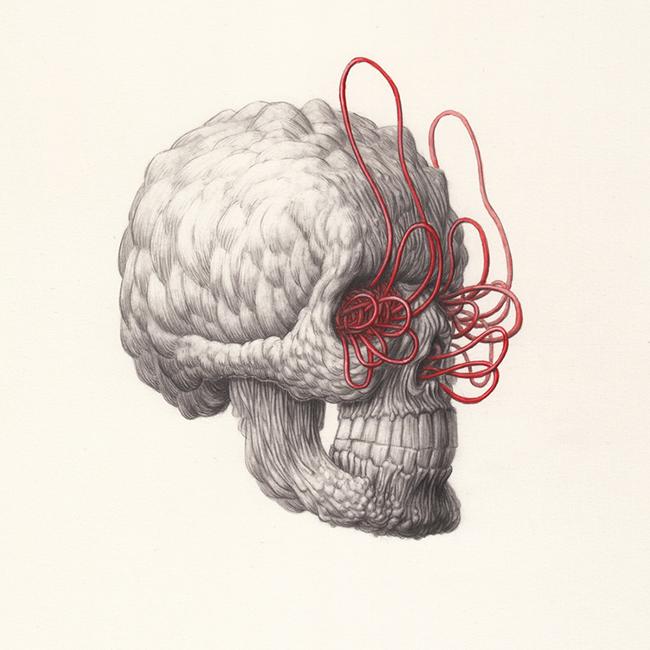 Nick Sheehy - Skull I