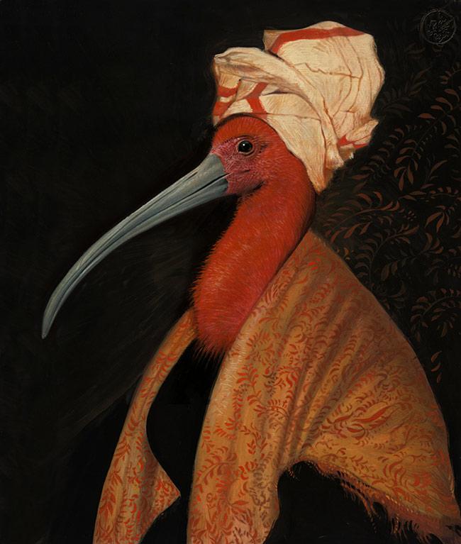 Bill Mayer - Ibis