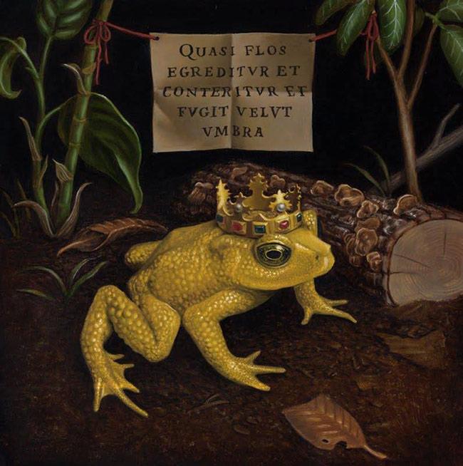 Madeline von Foerster - Bufo Perliglenes (Golden Toad)
