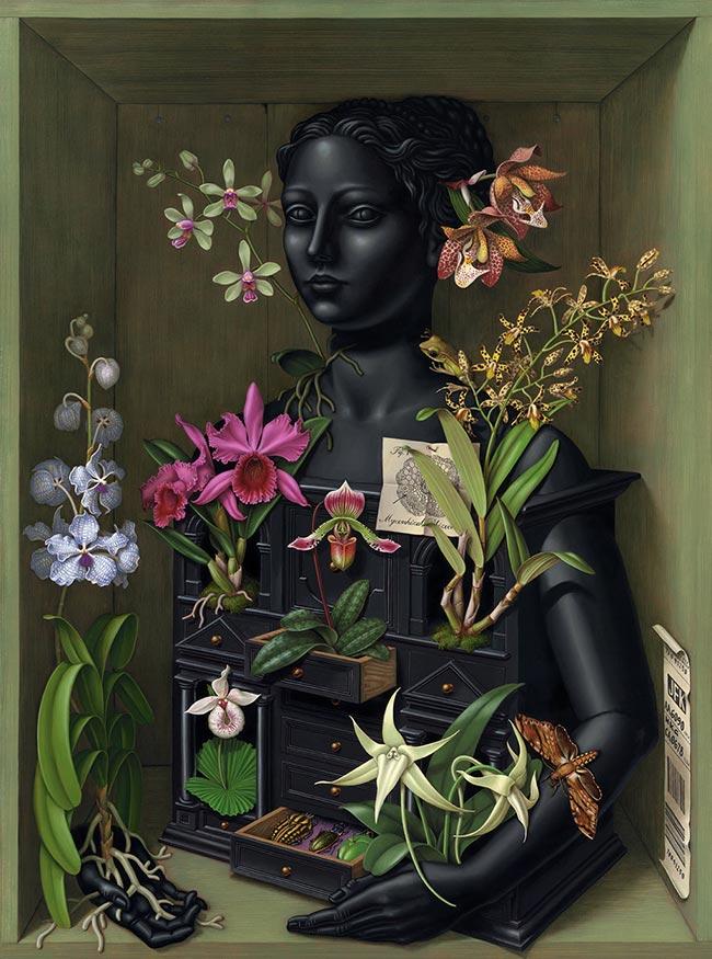 Madeline von Foerster - Orchid Cabinet