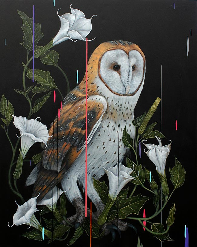 Frank Gonzales - Barn Owl and Daturas