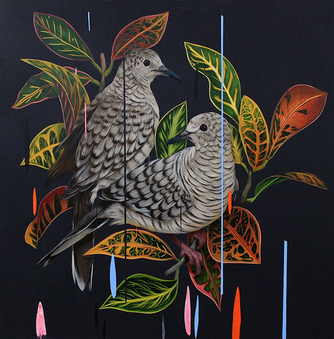 Frank Gonzales - Inca Doves and Croton Petra