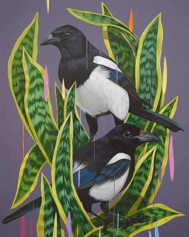 Frank Gonzales - Magpies and Mother in Law's