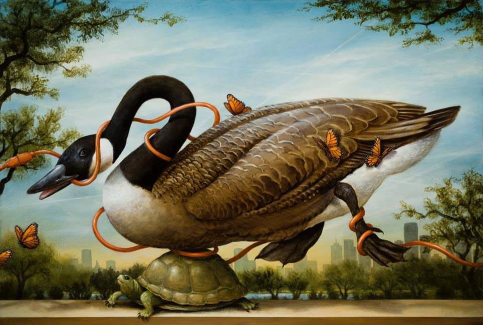 Kevin Sloan - Birds of America - Migration Interrupted