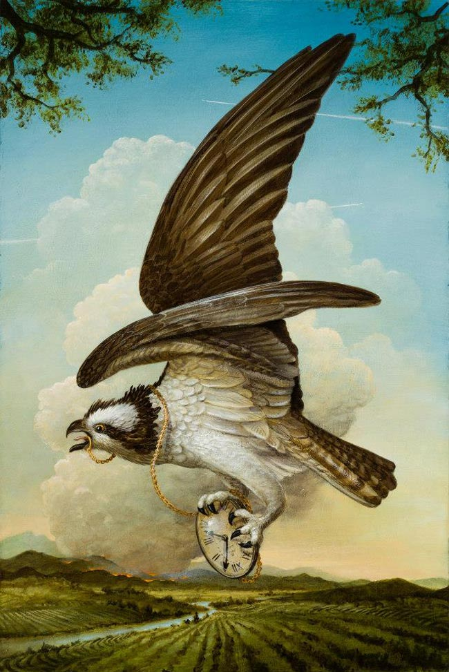 Kevin Sloan - Birds of America - The New Season