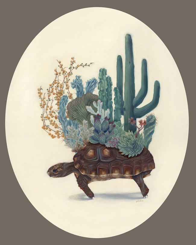 Jen Lobo - Arizona