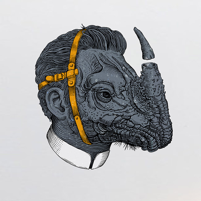 Valentin Leonida (Valle) - Rhinocerus (after Dürer)