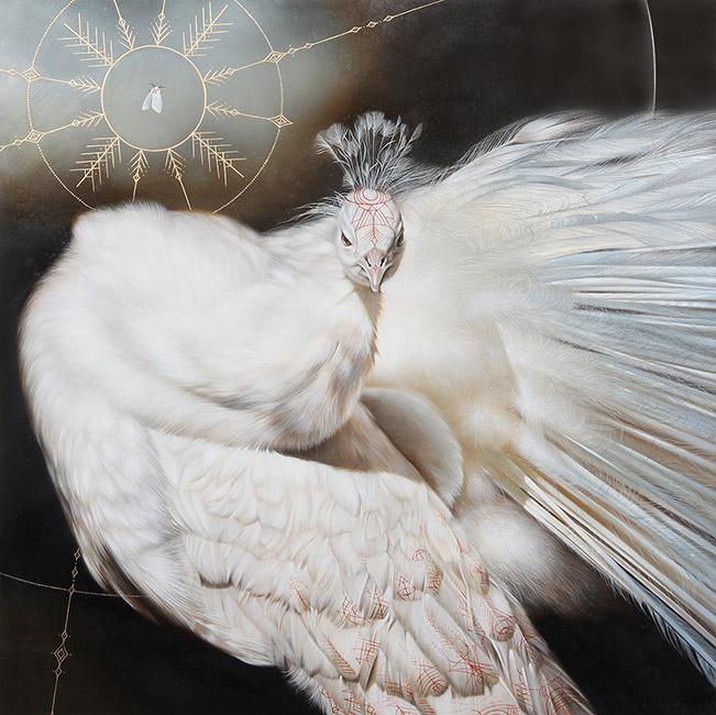 Josie Morway - Peacock