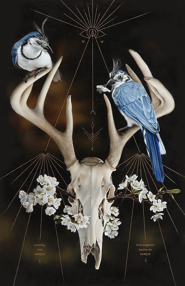Josie Morway - Skull