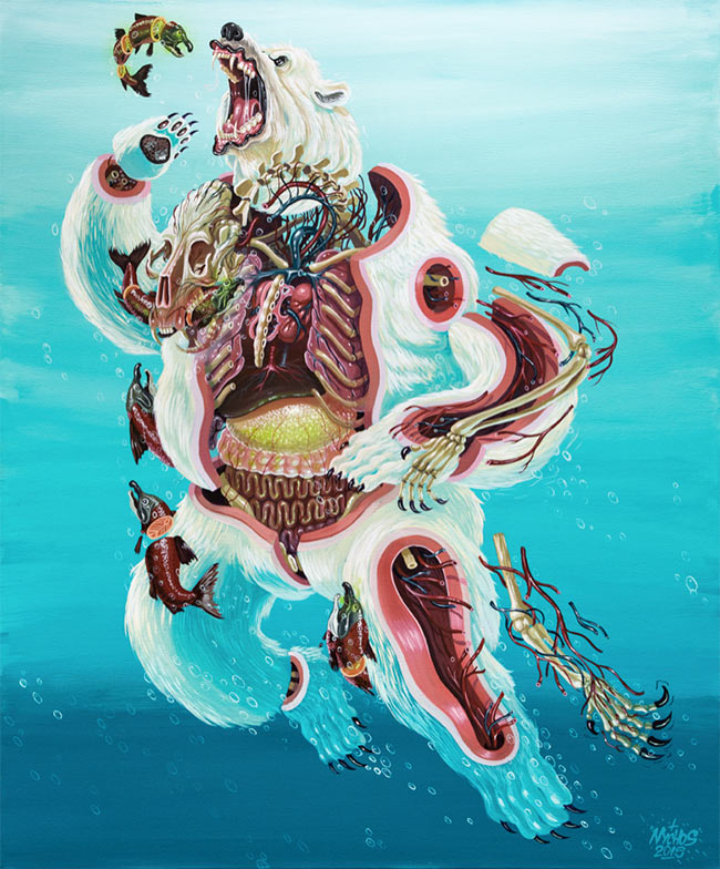 Nychos - Dissection of a Polar Bear
