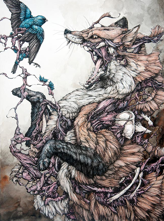 Lauren Marx - Red Fox and Indigo Bunting