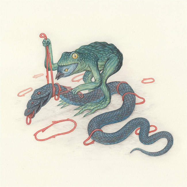 Nick Sheehy - Frog Bird Snake