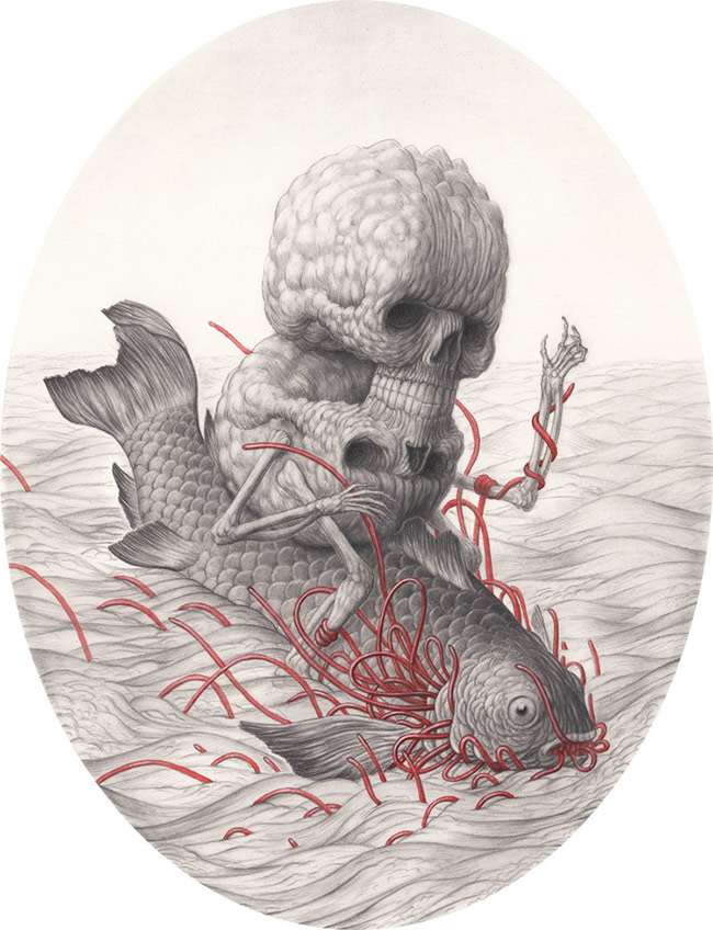 Nick Sheehy - The Fish 1