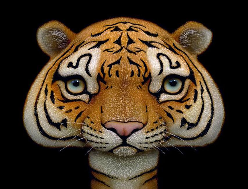 Naoto Hattori - Shroom Tiger