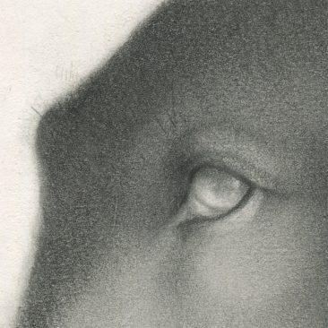 Allison Sommers - Savonarola (Detail 1)