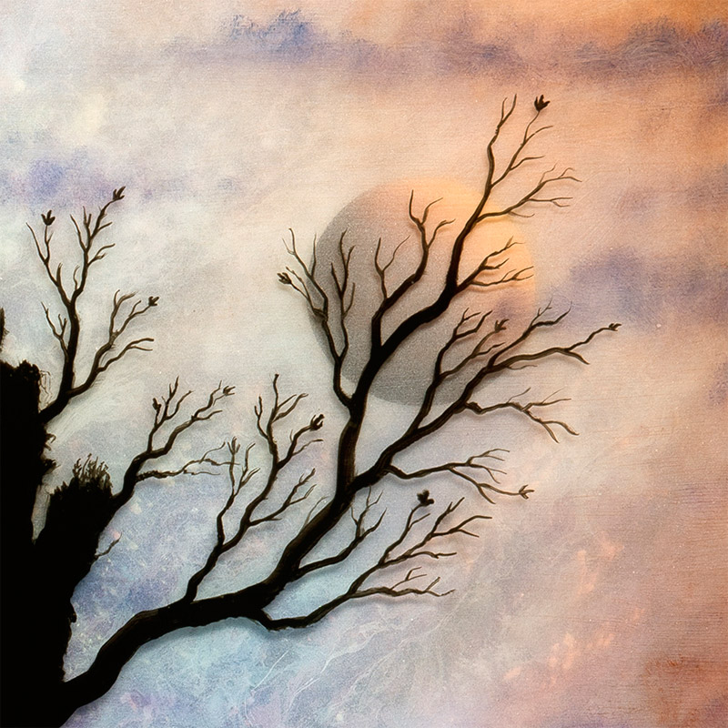 Andy Kehoe - Reminiscing Bygone Intentions (Detail 3)