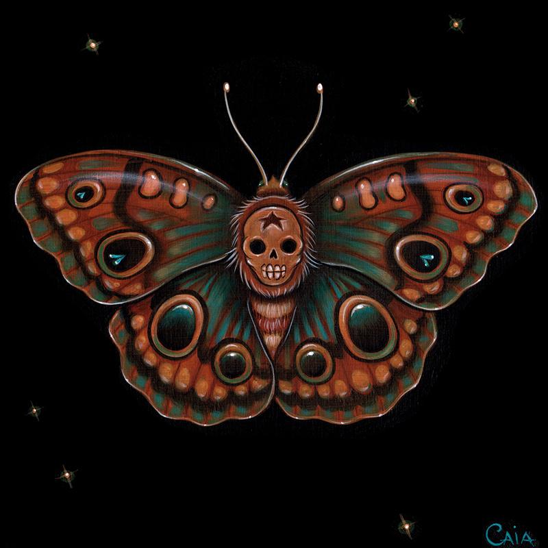 Caia Koopman - Calavera Lepidoptera