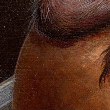 Dan May - Drifting Through the Cosmos (Detail 3)