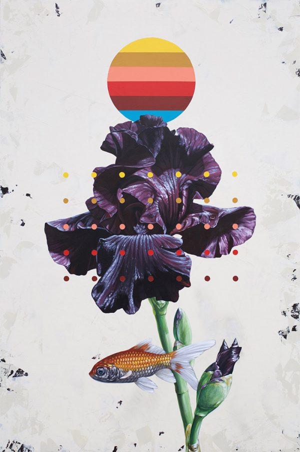 David Rice - Plight of the Iris