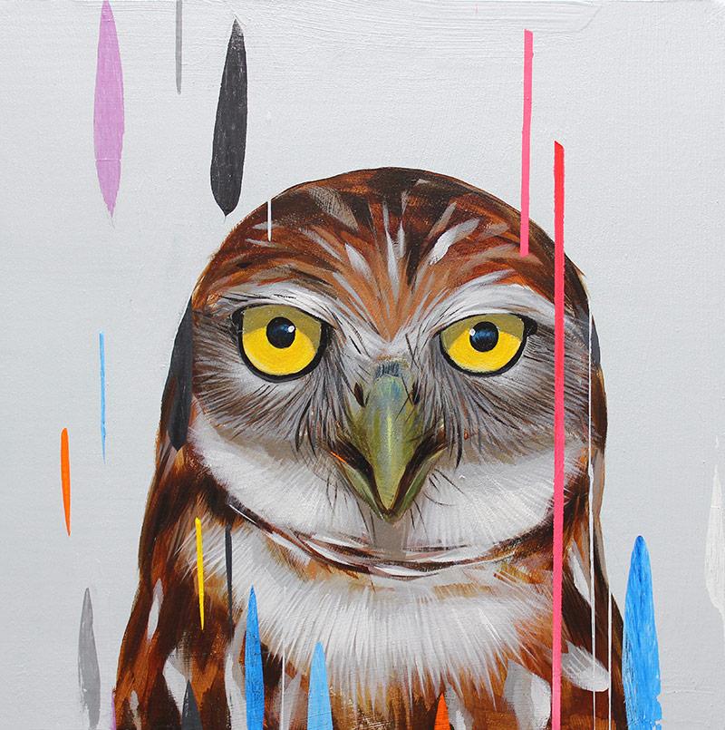 Frank Gonzales - Burrowing Owl