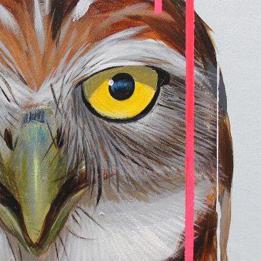 Frank Gonzales - Burrowing Owl (Detail 1)