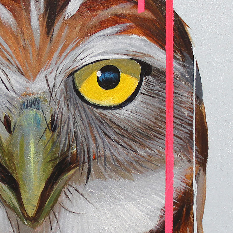 Frank Gonzales - Burrowing Owl (Detail 1)