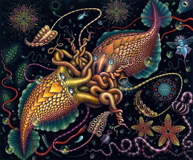 Robert Steven Connett - Cephalopods