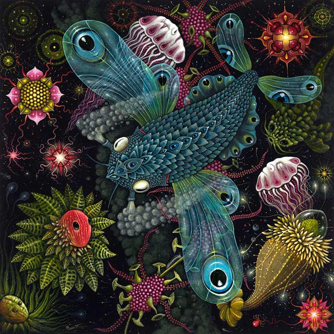Robert Steven Connett - Planktonauts