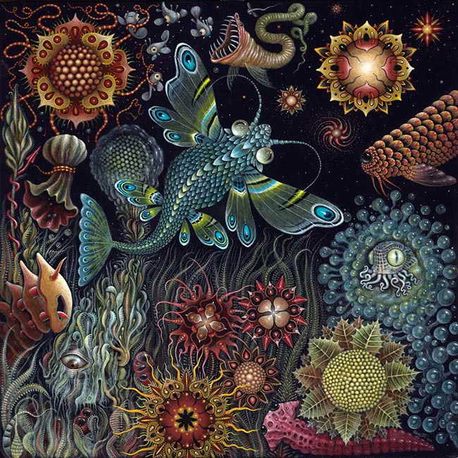 Robert Steven Connett - Star Fish