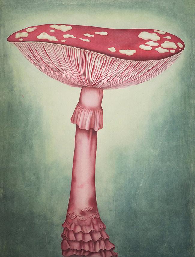 Alice Lin - A Huge Mushroom