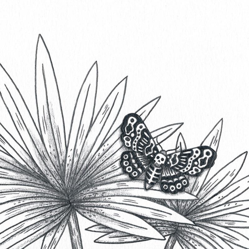 Bene Rohlman - Kantoku (Detail 1)