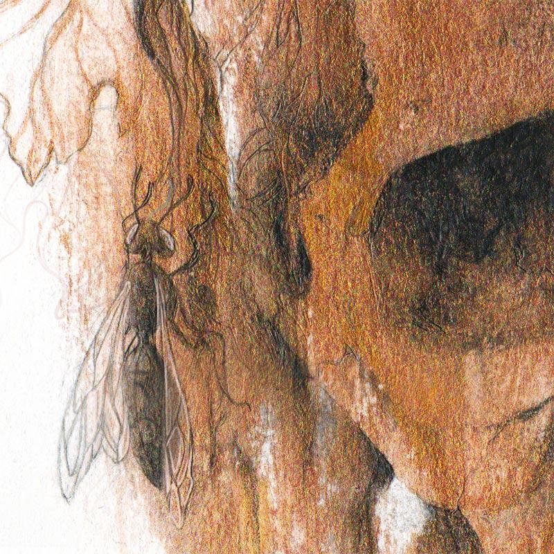 Corinne Reid - Winters Crown (Detail 4)