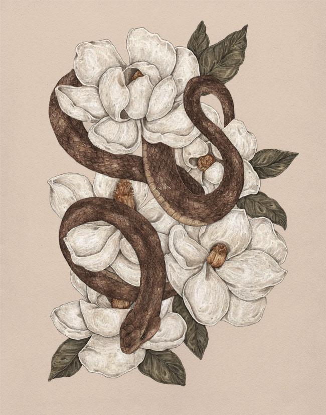 Jessica Roux - Magnolia Snake