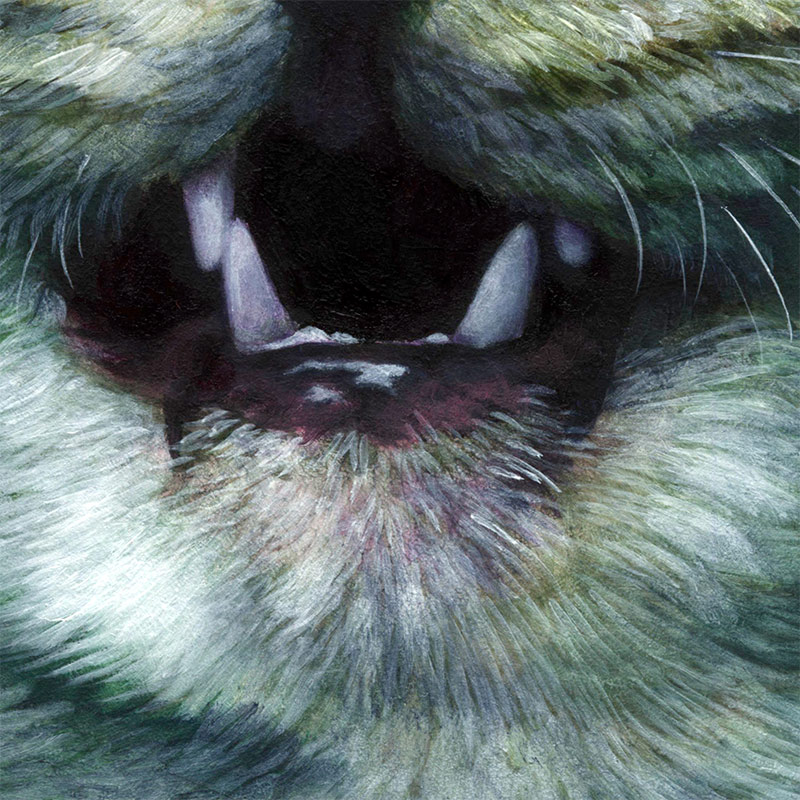 Johannah O'Donnell - The Kittening (Detail 3)