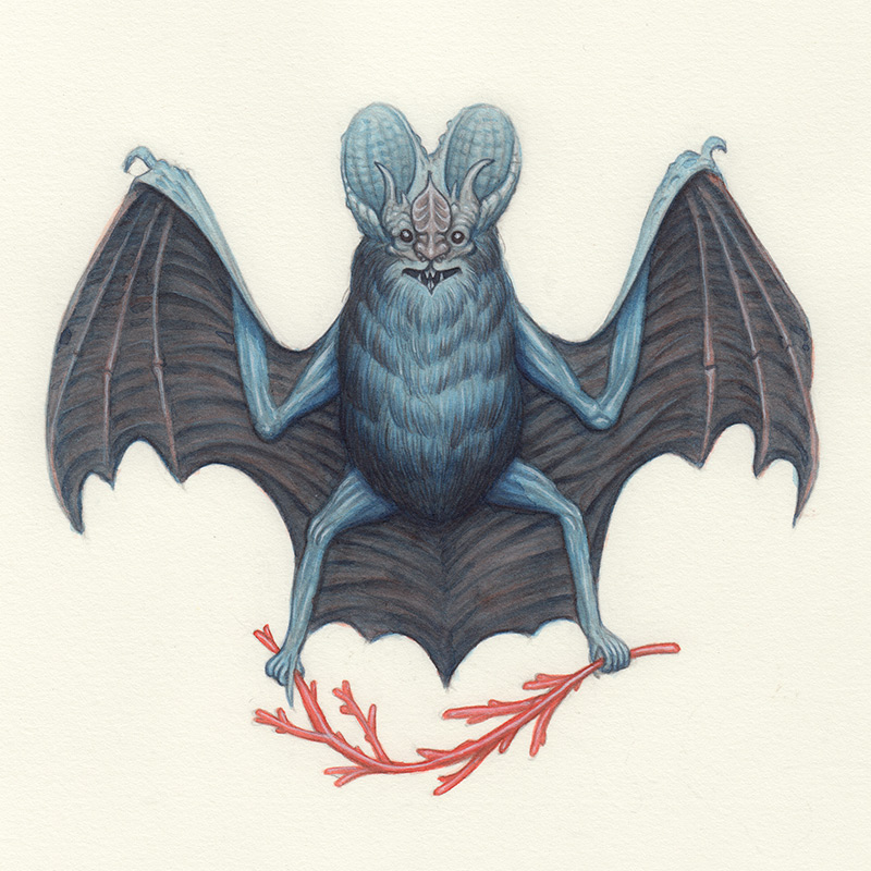 Nick Sheehy - Wizard Bat