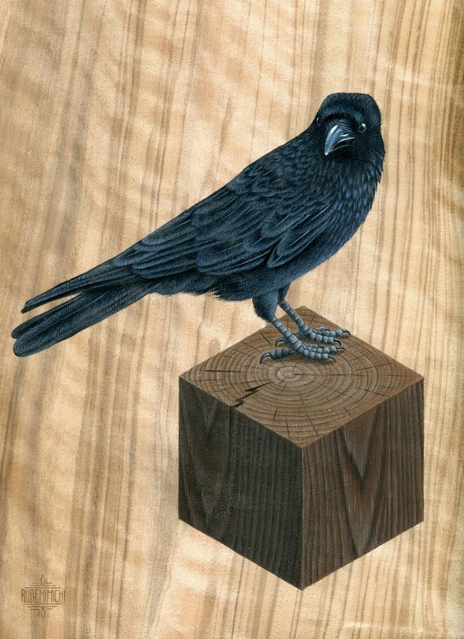 Rubenimichi - Corvus I