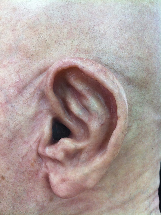 Victor LeBlanc - Old Man Skin Detail 2 (Airbrush and Silicone)