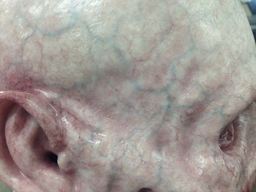 Victor LeBlanc - Painted Skin Texture (Silicone)