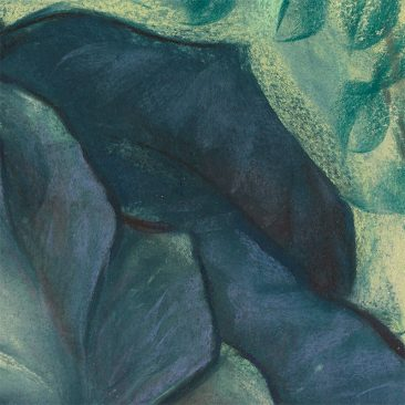 Ashly Lovett - Hellebore (Detail 2)