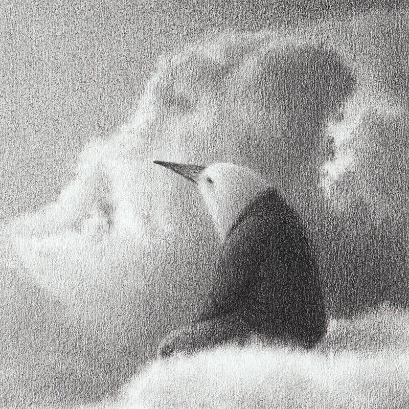 David Alvarez - Bird (Detail)