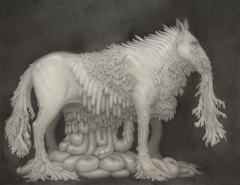 Nathan Reidt - I am the Stallion