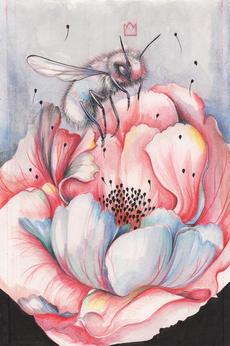 Marjolein Caljouw - Nectar