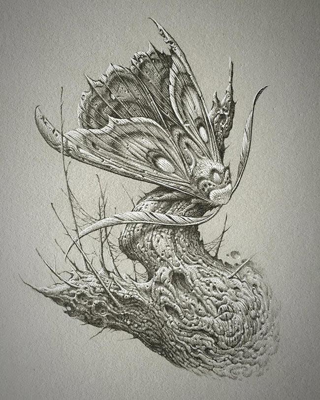 Aaron Horkey - Planchette Moth